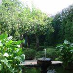 зеленые дворики