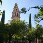 колокольня в апельсиновом дворике