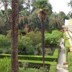 алея в садах Алькасара