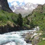 Река Ара в Пиренеях